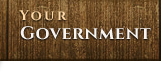 Your Government