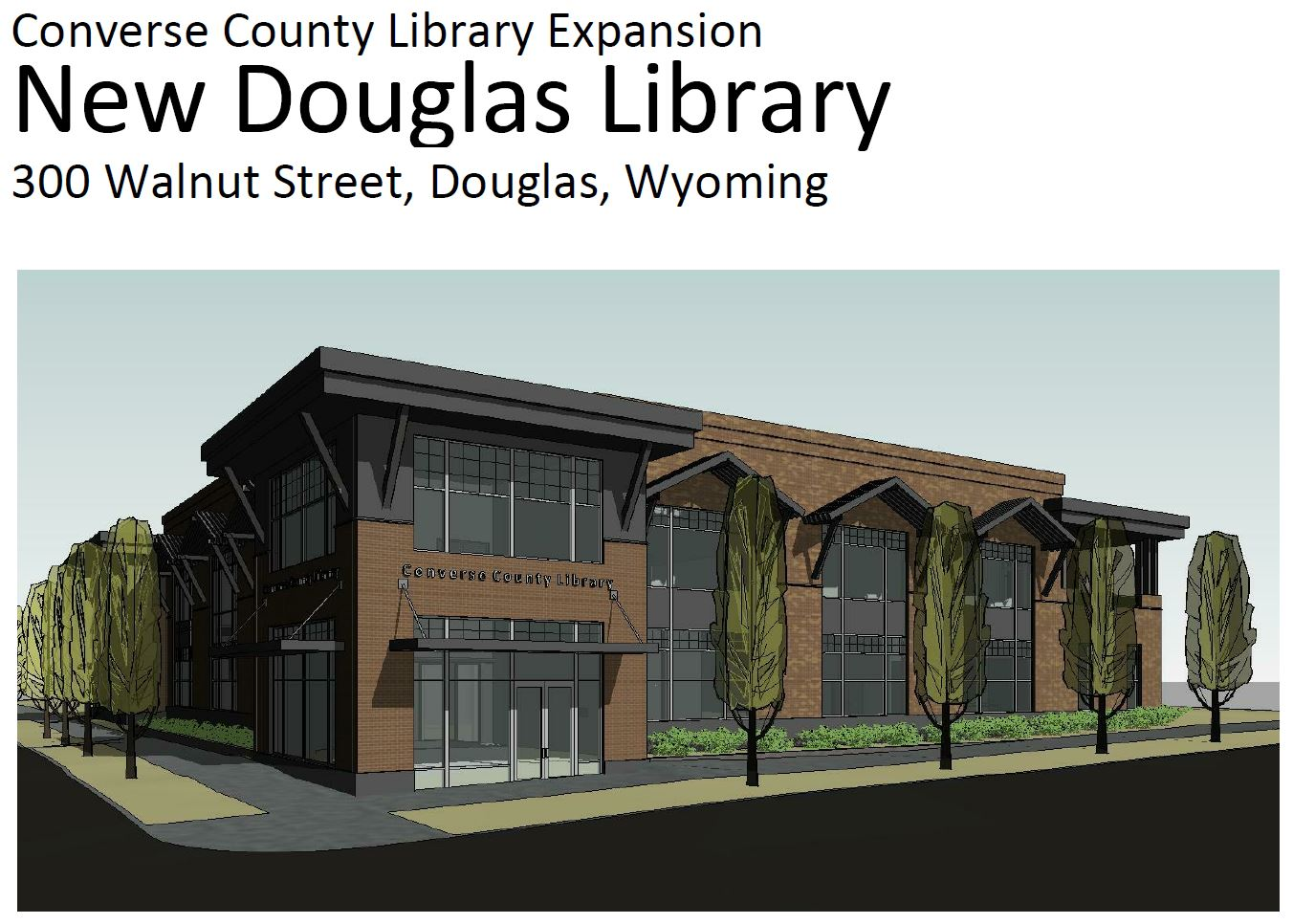Library - Development Plan Image.JPG